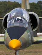 Fly the russian L-39 jet trainer in Florida!