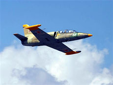 L-39 Flights and Training - the Ultimate Ride!