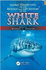 White Shark: Buy it now