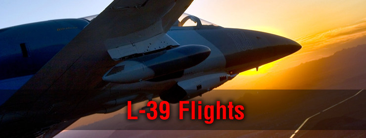 Fighter jet flights in the L-39 Albatros
