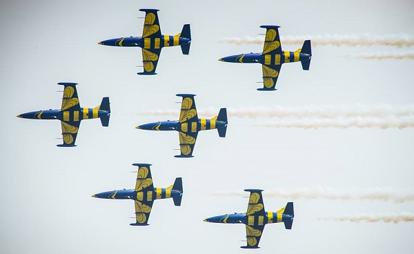 Baltic Bees flying in formation