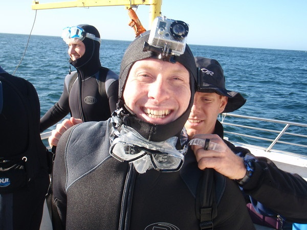 Cage Dive at the Farallones This Fall