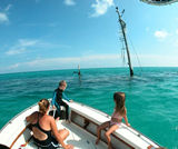 Explore sunken shipwrecks in Key West and the Caribbean