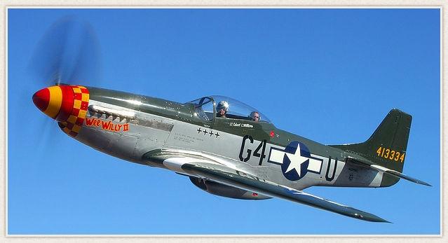 P 51 (航空機)の画像 p1_9