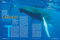 Review of Whale Encounter in Flying Adventures Magazine